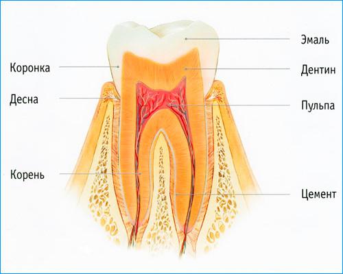 В эмали зуба нет нервных окончаний, поэтому при начальном кариесе болевые ощущения практически не выражены.