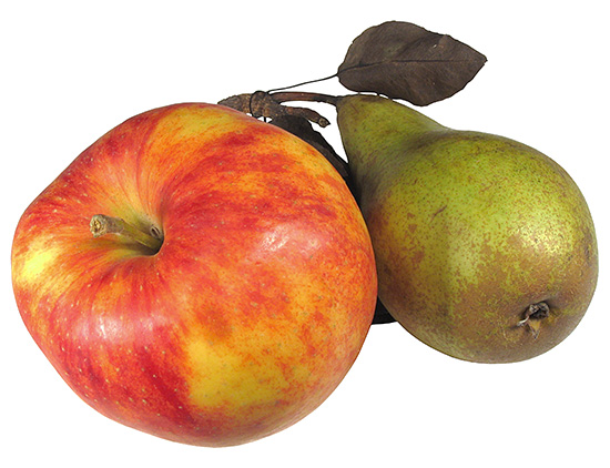 Твердые овощи и фрукты помогают очищению зубов от бактериального налета.