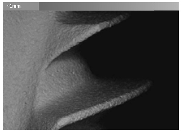 На фото показана поверхность имплантата Alpha Bio под микроскопом.